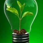 Social-Entrepreneur-Green-Ideas-Cropped-202x300